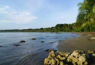 WFR Courses Costa Rica