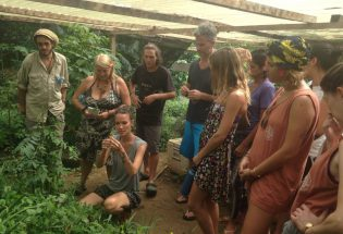 Learning plants medicinal values in Costa Rica
